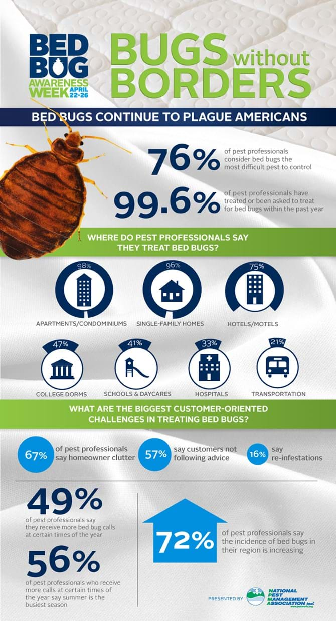 2013 Bugs without borders infographic