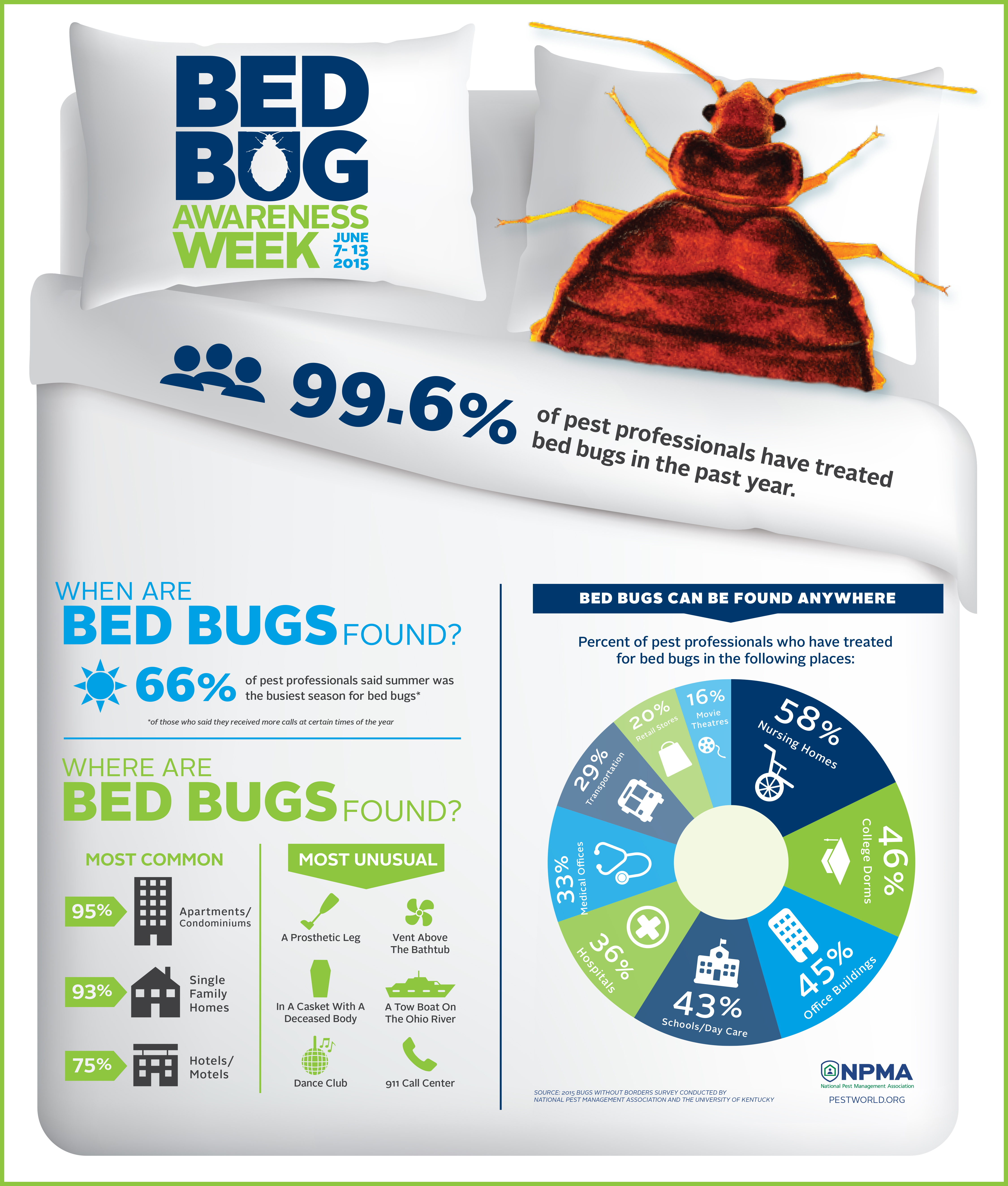 2015 Bugs Without Borders Infographic
