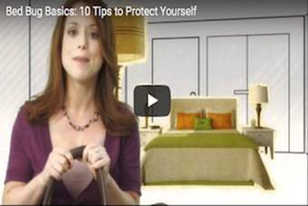 Bed Bug Basics-10 Tips to Protect Yourself.png