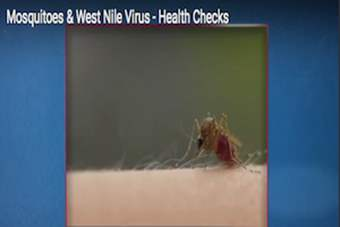 Health Checks - Mosquitoes & West Nile Virus.png