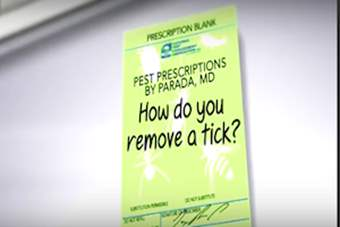 Pest Prescriptions - How Do You Remove a Tick?.png