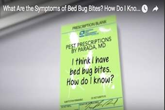 Pest Prescriptions - I Think I Have Bed Bugs. How Do I Know?.png