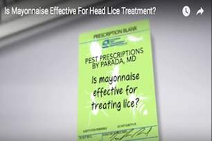 Pest Prescriptions - Is Mayonnaise Effective For Treating Lice?.png