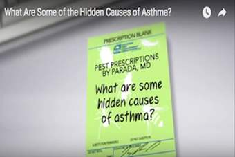 Pest Prescriptions - What Are Some of the Hidden Causes of Asthma?.png