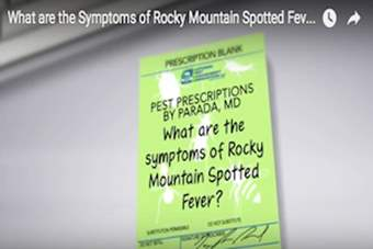 Pest Prescriptions - What are the Symptoms of Rocky Mountain Spotted Fever?.png