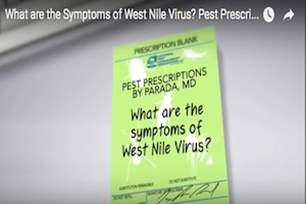 Pest Prescriptions - What are the Symptoms of West Nile Virus? .png