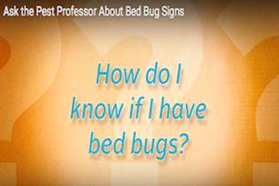 How do I know if I have bed bugs?.png