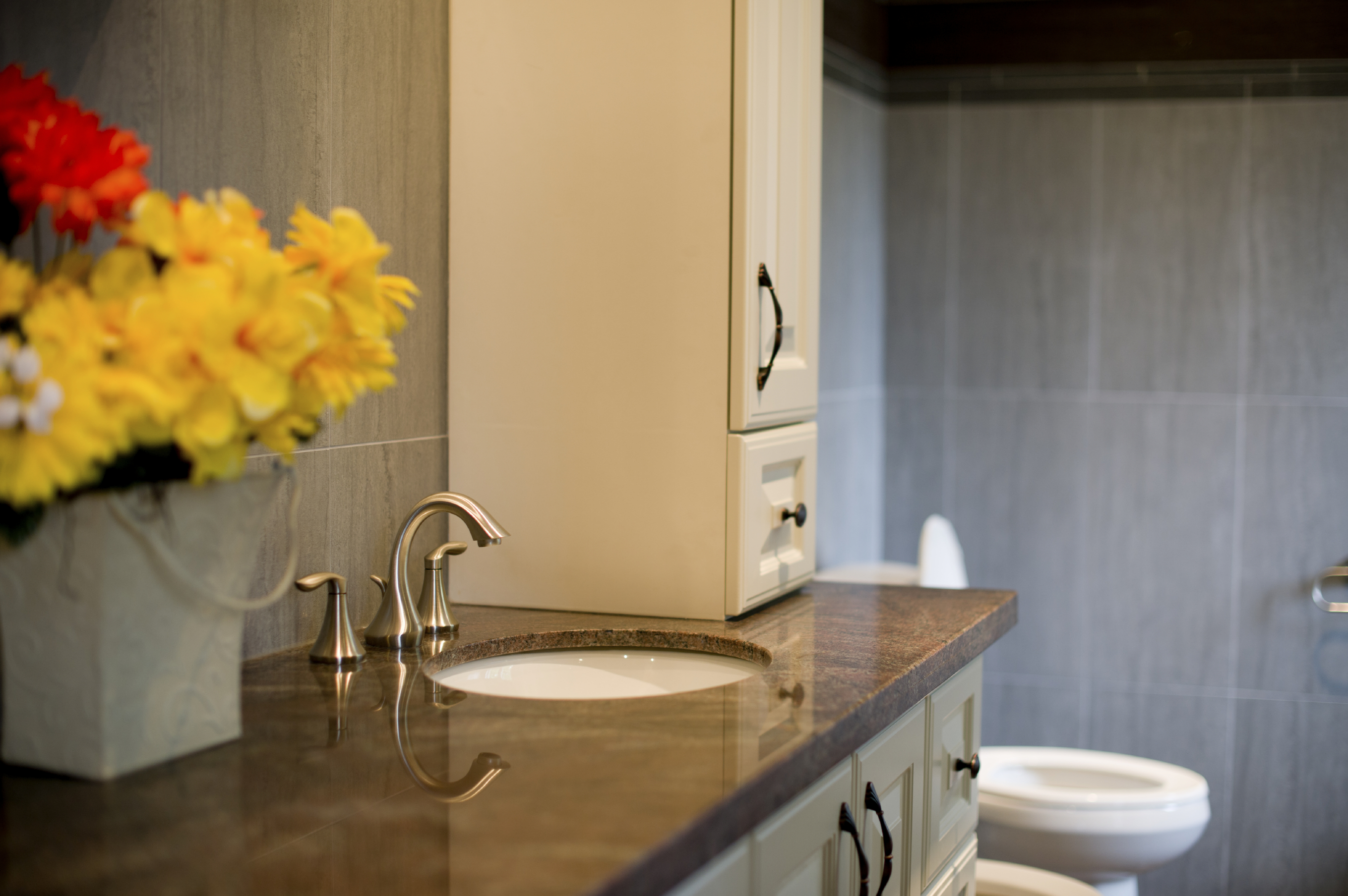 Areas Around The House With Excess Moisture Are Known To Attract Ants So Bathrooms Highly Susceptible An Infestation Carpenter For Example