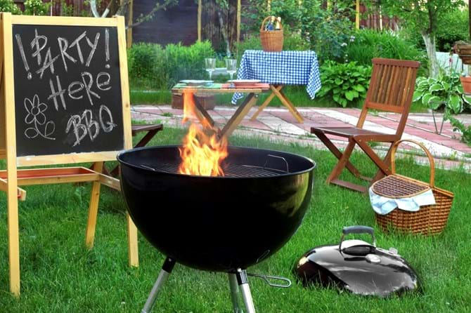 To Keep Your Guests Happy And Backyard Pest Free During Summertime Barbecues Consider The Following Tips Mosquitoes