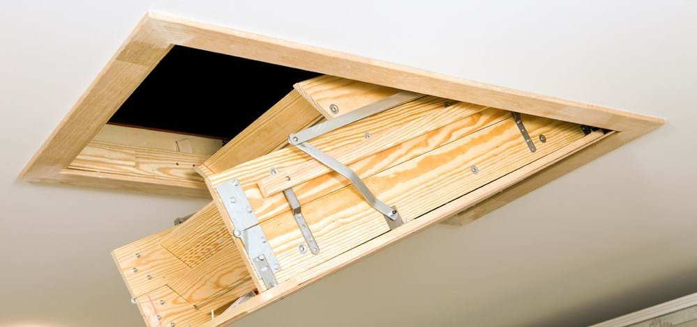 Attic Bugs, Insects, Pest: Prevention Tips for Attic Bugs on squirrels in attic, fans in attic, wood in attic, air conditioning in attic, framing in attic, antenna in attic, genie in attic, bathrooms in attic, exhaust in attic, painting in attic, conduit in attic, windows in attic, electrical in attic, hvac in attic, cable splitter in attic, lights in attic, coil in attic, kitchen in attic, flooring in attic,